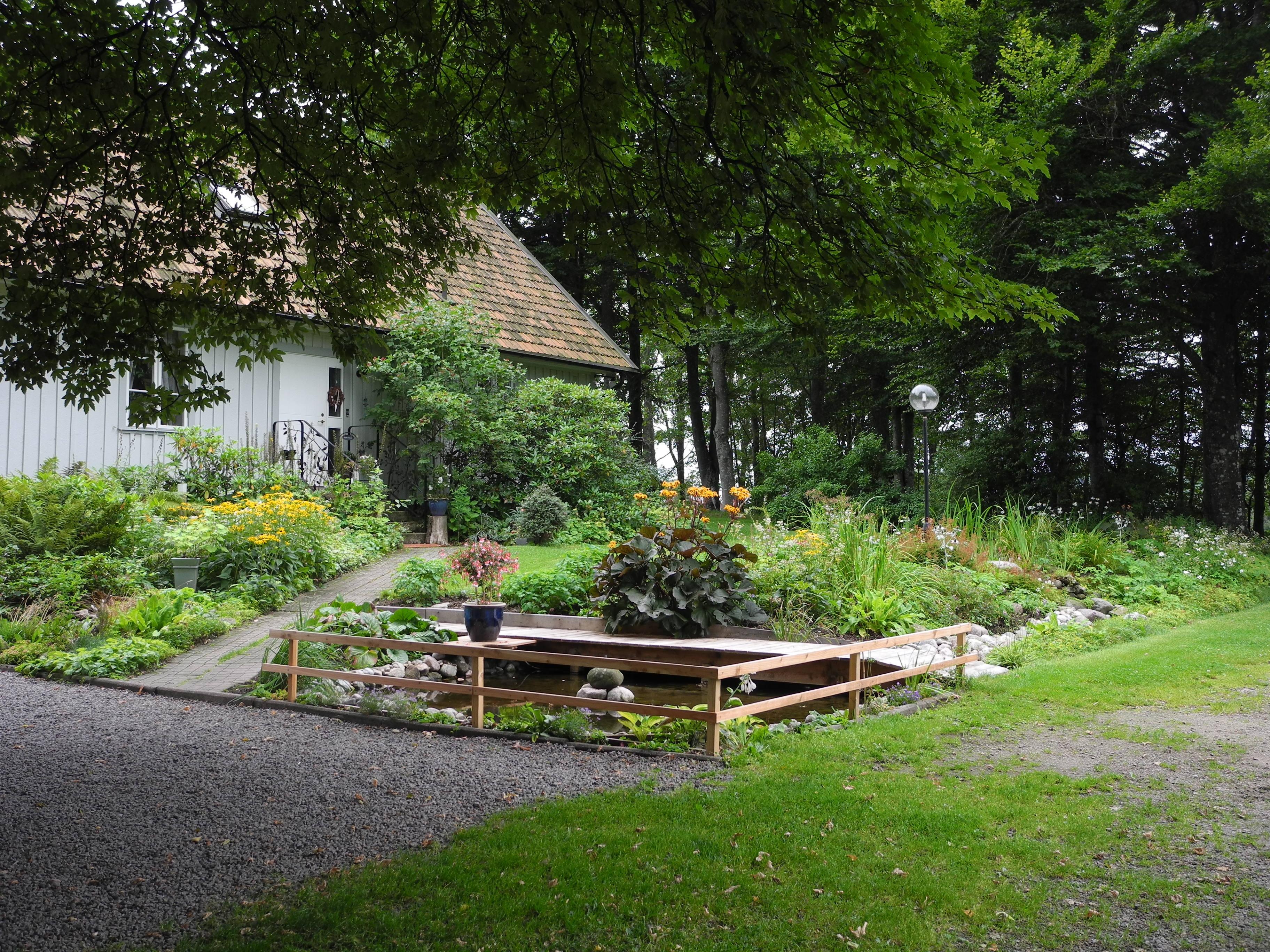 18 damm trädgård 120828 div från trädgård 006